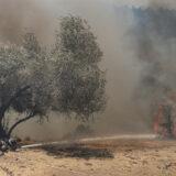 Turska se već šesti dan bori sa požarima, 10.000 ljudi evakuisano u provinciji Mugla 2