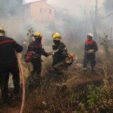 Građani u Grčkoj protestuju zbog neoganizovanosti vlasti povodom požara na ostrvu Evija 13
