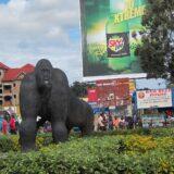 Uganda: U poseti porodici Oruzogo 12