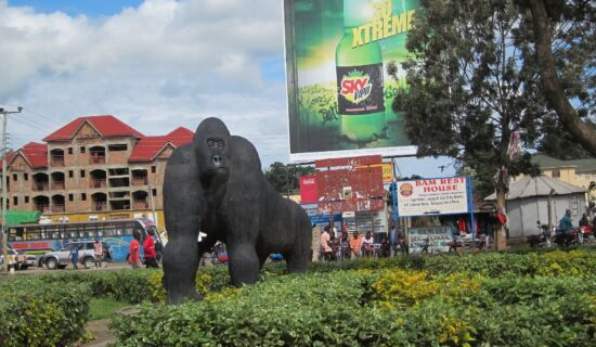 Uganda: U poseti porodici Oruzogo 13