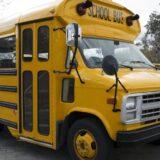 Škola, rasizam i nasilje: Otac traži milion dolara odštete zbog šišanja njegove ćerke u školskom autobusu 9