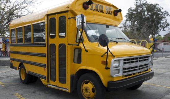 Škola, rasizam i nasilje: Otac traži milion dolara odštete zbog šišanja njegove ćerke u školskom autobusu 7