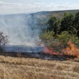 Veliki požar u ataru sela Trnavac, Vatrogasci na terenu 14