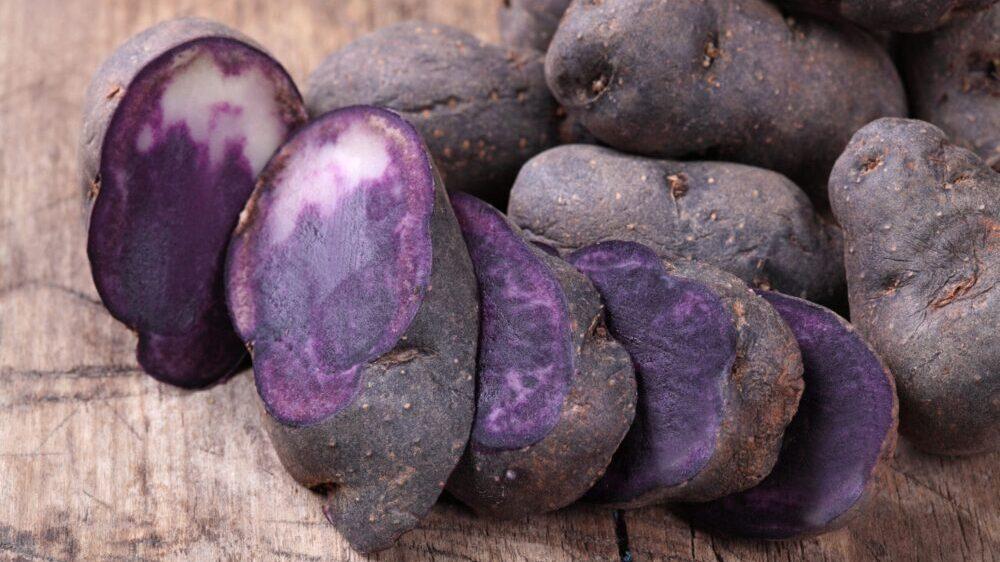 Plavi krompir - omiljeno jelo Maja i Inka 2