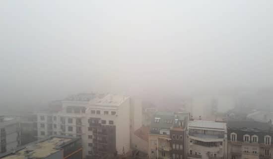 Macura: Nije preduzeto ništa da se poboljša kvalitet vazduha 13