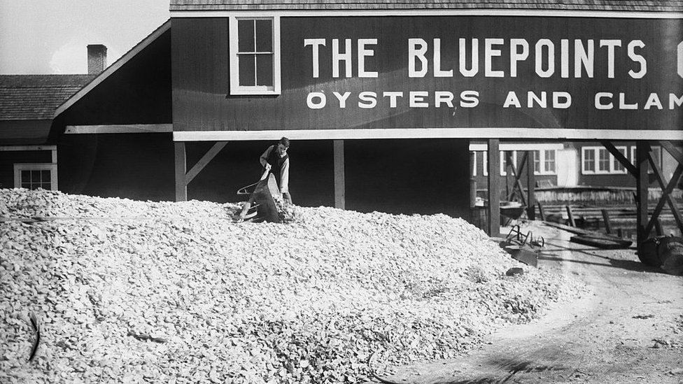 A man empties a wheelbarrow more on top of a mountain of oysters