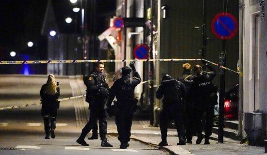 Policija: Žrtve napada u Norveškoj nisu ubijene lukom i strelom 11