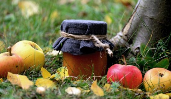 Svetski dan jabuke: Voće bogato vlaknima 9