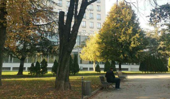 Sadnja 28 stabala u Tašmajdanskom parku 27 i 28. oktobra 13